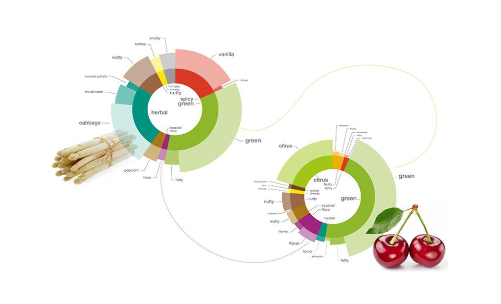 foodpairing, food innovate summit, amesterdam, inovação, alimentos, sra inovadeira, palestra, pesquisa, desenvolvimento, tendência, sabor